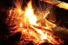 Wild Fire on the river bank royalty free stock image