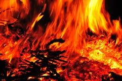 Wild Flames Stock Image
