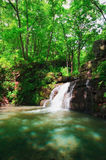 Wild flod 4 Arkivfoton
