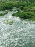 Wild flod fotografering för bildbyråer