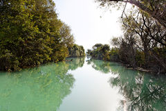 Wild flod nära Parga, Grekland, Europa Royaltyfria Bilder