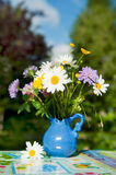 Wild flower bouquet Royalty Free Stock Photos