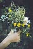 Wild flower bouquet Royalty Free Stock Photos
