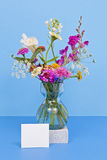 Wild Flower Bouquet. A vase of colorful wild flowers against a colorful solid background Royalty Free Stock Photo