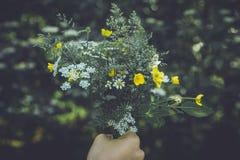 Wild flower bouquet Stock Image