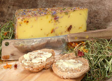 Wild flower cheese Stock Images