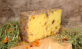 Wild flower cheese Royalty Free Stock Photos