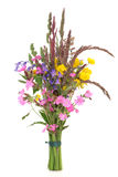 Wild Flower Posy Royalty Free Stock Images