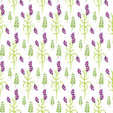 Wild flower purple plant spring field seamless pattern. Floral tender fine summer vector pattern on white background. For fabric textile prints and apparel Royalty Free Stock Photos