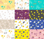 Wild flower set of spring field seamless patterns. Royalty Free Stock Photos