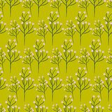 Wild flower spring field seamless pattern. Wild flower green branch spring field seamless pattern. Floral tender fine summer vector pattern on salad green Royalty Free Stock Photos