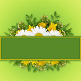 Wild flowers arrangement and frame Royalty Free Stock Photos