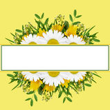 Wild flowers arrangement and frame Royalty Free Stock Photography
