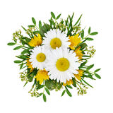 Wild flowers arrangement Royalty Free Stock Photography