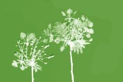 Wild  flowers background Stock Photo