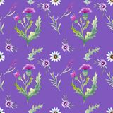 Wild flowers background royalty free illustration