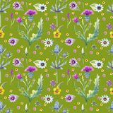 Wild flowers background. Seamless pattern. Wild flowers background Watercolor. royalty free stock images