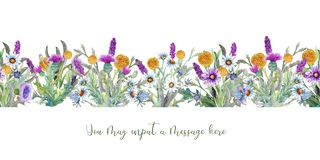 Wild flowers background Watercolor. Field flowers. Repetition of summer horizontal border. Watercolor compositions for stock illustration