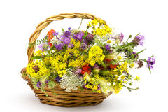 Wild flowers in a basket Stock Photos