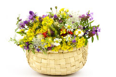 Wild flowers in a basket Royalty Free Stock Image