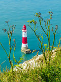 Wild flowers and Beachy Head Lighthouse, Eastbourne, East Sussex, England Stock Photos