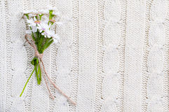 Wild flowers on a beige knitted texture Royalty Free Stock Photography