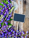 Wild flowers and a black board Stock Photography