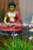 Wild flowers in bloom with buddhist statue in background Royalty Free Stock Image