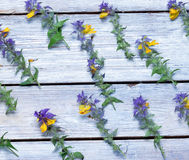 Wild flowers on the boards.background.view Stock Photos