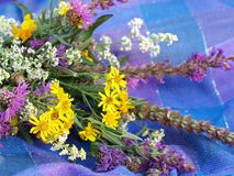 Wild flowers bouquet Stock Photos