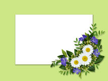 Wild flowers bouquet and card Royalty Free Stock Photo