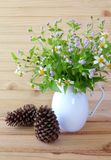 Wild flowers bouquet in white vase Stock Images