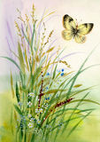 Wild flowers and a butterfly. Beautiful watercolor Stock Photo