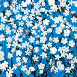 Wild flowers card Stock Photo