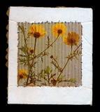 Wild flowers cardboard frame Stock Photos