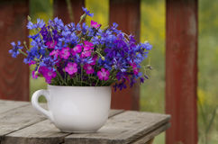 Wild flowers, carnation and cornflower Royalty Free Stock Photo