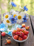Wild flowers with cherry Royalty Free Stock Photos