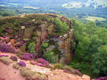 Wild flowers and cliff. View from the edge of a cliff in the peak district, UK royalty free stock photos