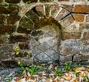 Ferns and Wild Flowers at the Grave. Wild flowers and ferns growing between the bricks of an above ground grave in an old colonial cemetery in South Carolina royalty free stock images