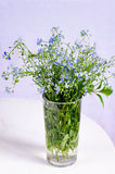 Wild flowers in the glass Stock Image