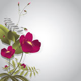 Wild flowers on gray Stock Images
