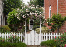 Wild flowers growing over white picket fence royalty free stock photos