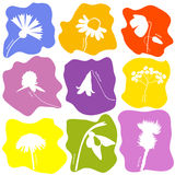 Wild flowers icons set Stock Image