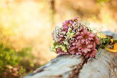 Wild Flowers lie on the tree in the forest Royalty Free Stock Photography