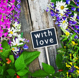 Wild flowers with love Stock Images