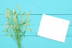 Wild flowers on mint wood with white card royalty free stock photos