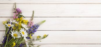 Wild flowers on old grunge white wooden background chamomile lu. Pine dandelions thyme mint bells rape Royalty Free Stock Photos