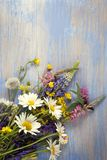 Wild flowers on old grunge wooden background chamomile lupine d. Wild flowers on old grunge blue wooden background chamomile lupine dandelions thyme mint bells Stock Photo