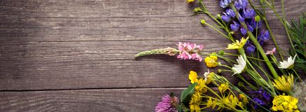 Wild flowers on old grunge wooden background chamomile lupine dandelions thyme mint bells.  stock photos