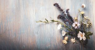Wild flowers on old grunge wooden background chamomile lupine dandelions thyme mint bells rape
